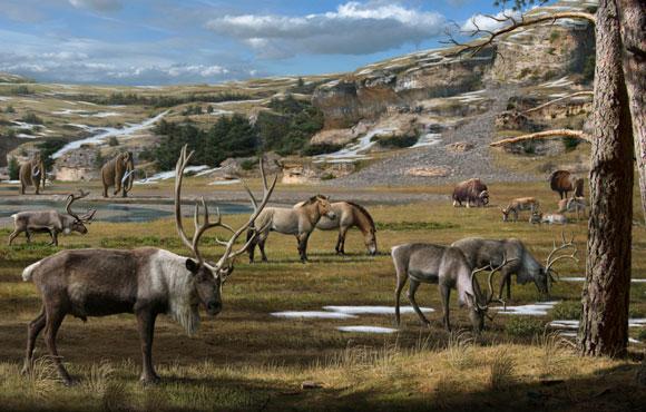 חיות בר בעידן הפליסטוקן