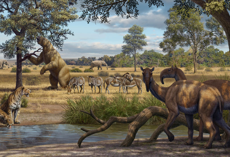 חיות בר בעידן הפלסיטוקן